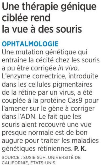 8 therapie genique pour la vue